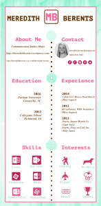 infographicresume_edited-3